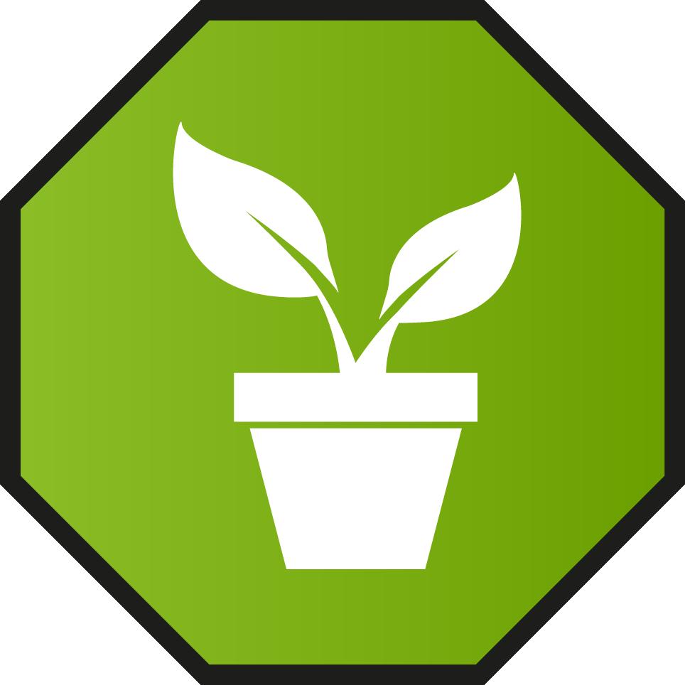 plantas leñosas